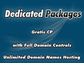 Cheap dedicated hosting package